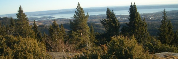 view_over_Oslofjord